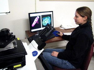 confocal scope